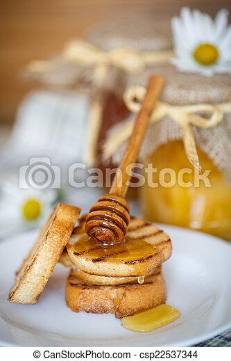 Tostadas con miel - csp22537344