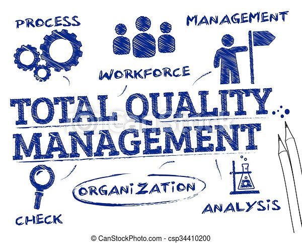 Total quality management. chart with keywords and icons.