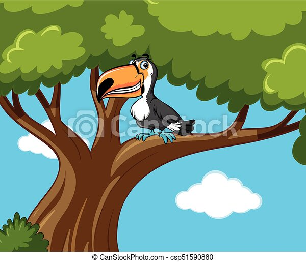 Toucan bird on the branch - csp51590880