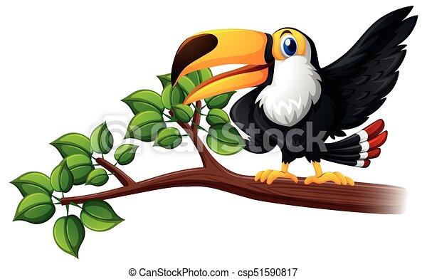 Toucan bird on the branch - csp51590817