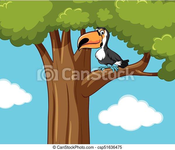 Toucan bird on the tree branch - csp51636475