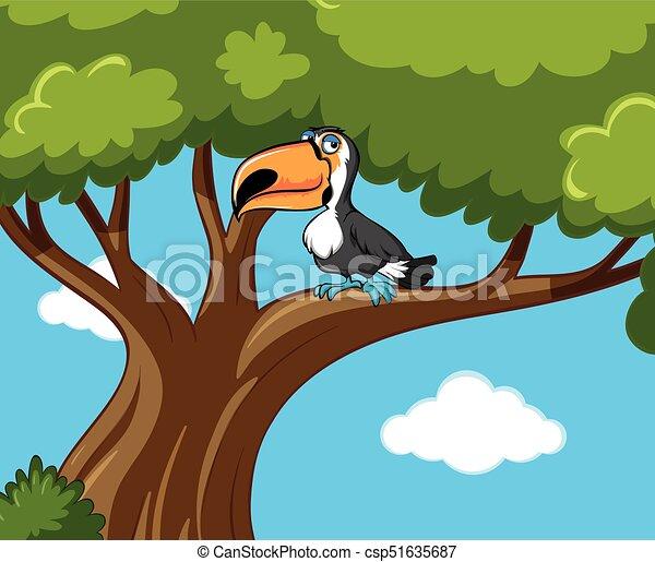 Toucan bird stands on branch - csp51635687