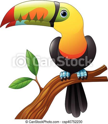 Toucan cartoon sitting on branch - csp40752230