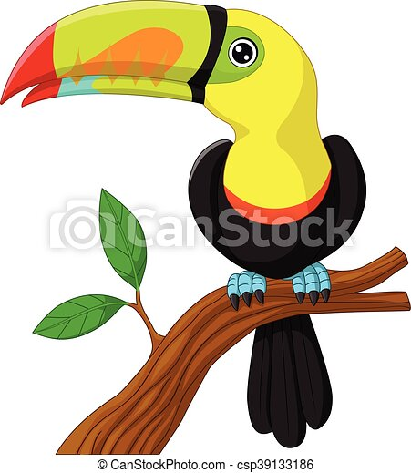 toucan cartoon sitting on the branc - csp39133186