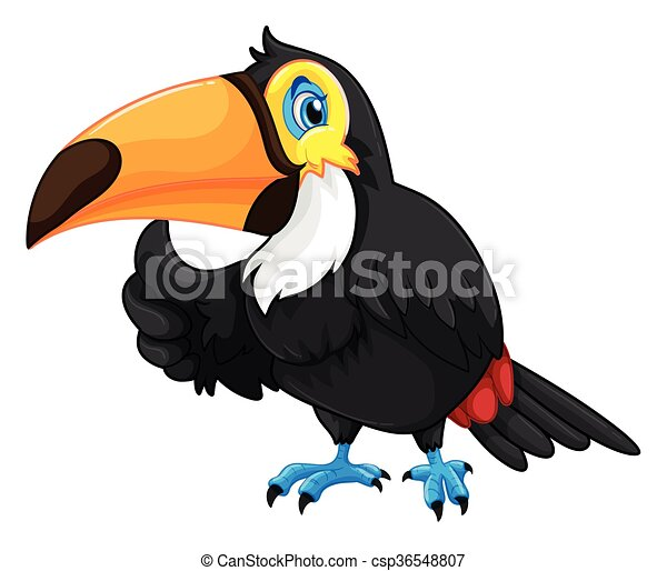Toucan with happy face - csp36548807