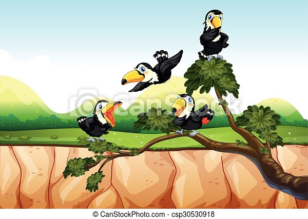Toucans on the branch - csp30530918