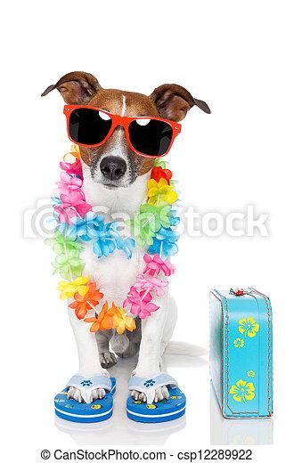 tourist dog with hawaiian  lei and a bag - csp12289922
