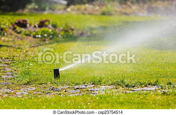 trávník, gardening., postřikovač, nad, namočit, postřikování, grass. - csp23754514