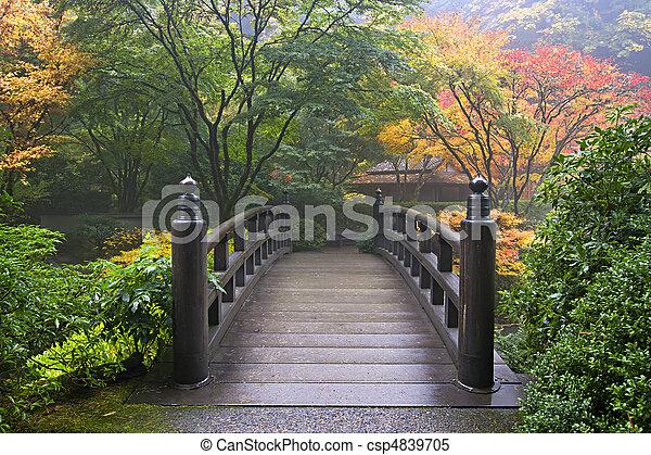trä bro, japanska trädgård, falla - csp4839705