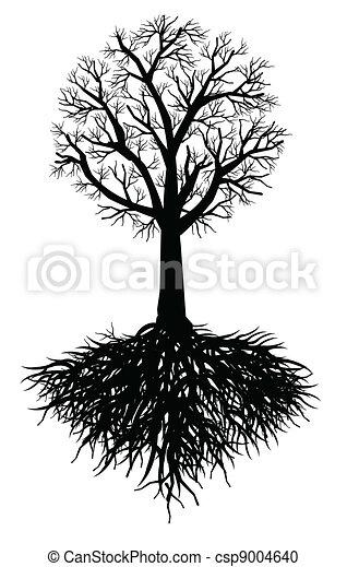 træ, vektor, rod - csp9004640