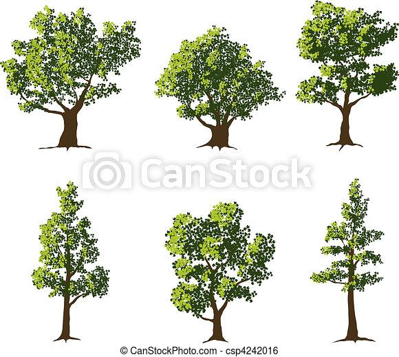 træer - csp4242016