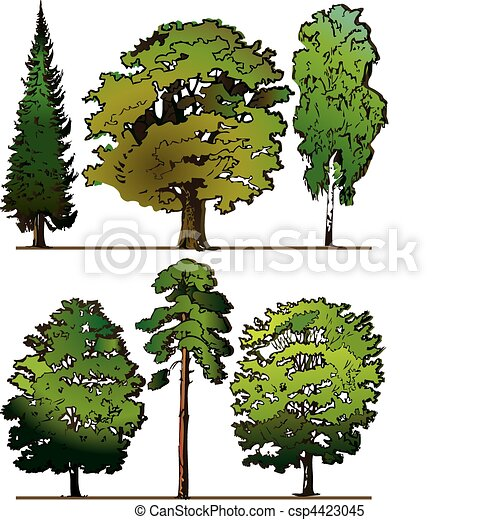 træer. - csp4423045