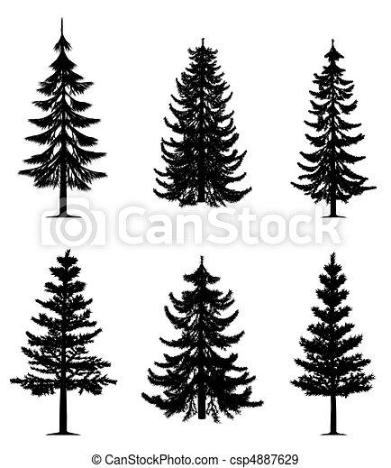 træer, samling, fyrre - csp4887629