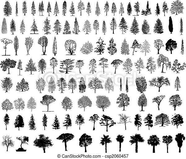 træer - csp2060457