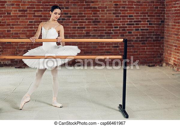 Una joven atractiva haciendo ejercicio con Barre en el estudio de baile - csp66461967