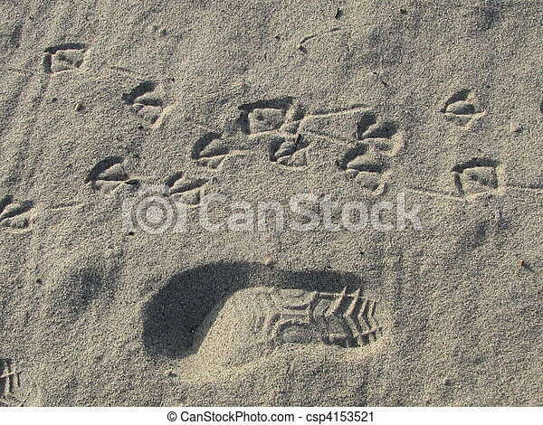 Traces in the sand - csp4153521