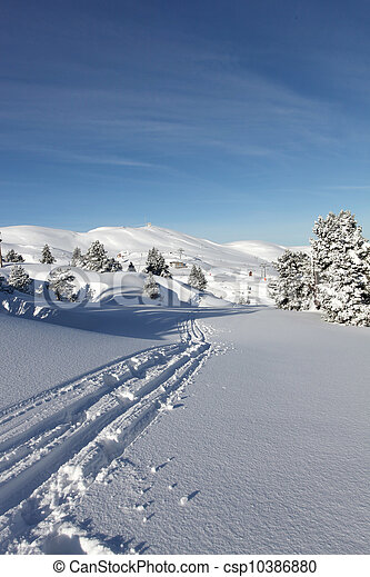 Tracks in the snow - csp10386880