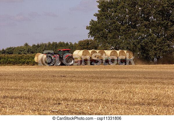 Tractor - csp11331806