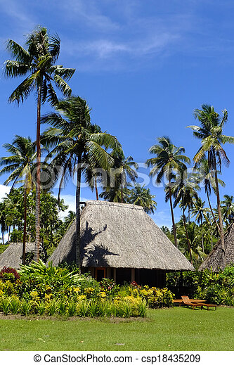 Traditional bure with thatched roof, Vanua Levu island, Fiji - csp18435209