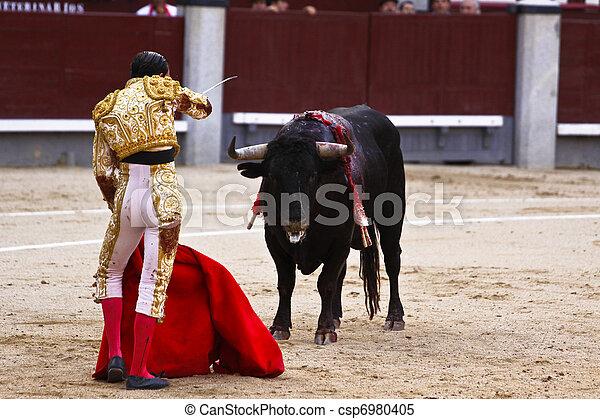 Traditional corrida - bullfighting in spain - csp6980405