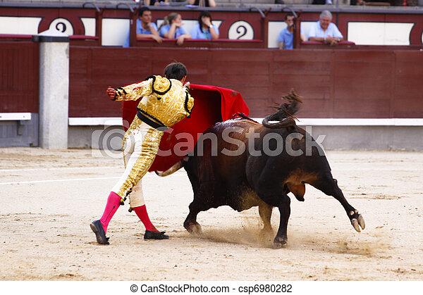 Traditional corrida - bullfighting in spain - csp6980282