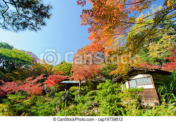 Traditional House in Japanese Garden - csp19739812