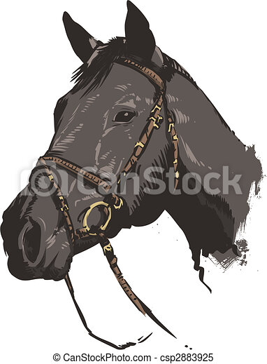 Traditional style horse vector illustration - csp2883925