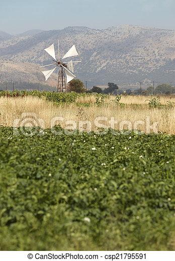 Traditional windmills in Lasithi plateau. Crete. Greece - csp21795591
