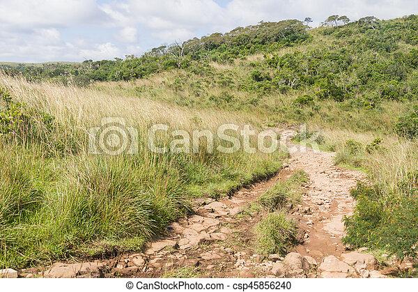 Trail at Fortaleza Canyon - csp45856240