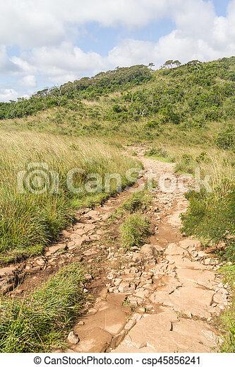 Trail at Fortaleza Canyon - csp45856241