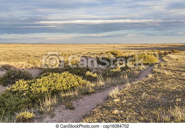 trail over prairie - csp16084702