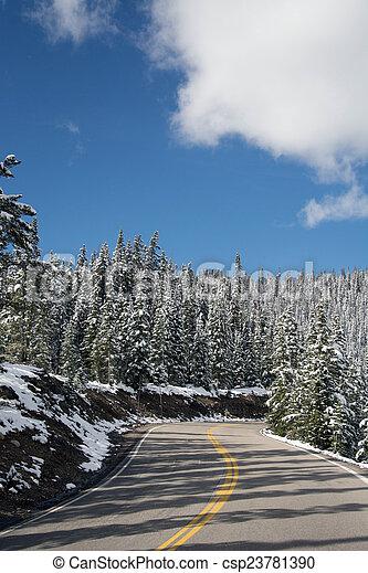 Trail Ridge Road - csp23781390