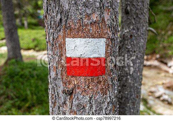 Trail sign - csp78997216
