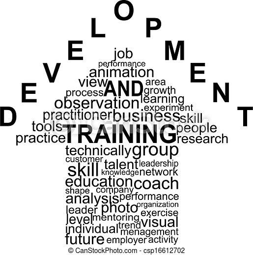 Training and Development - csp16612702