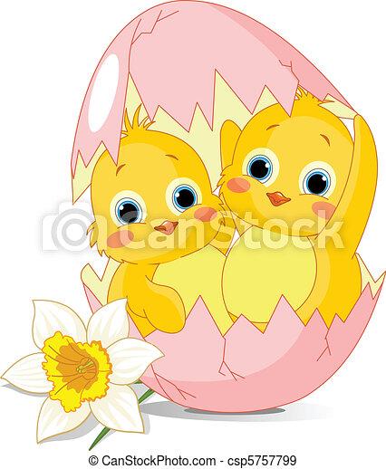 Dos pollos de Pascua nacidos de EG - csp5757799