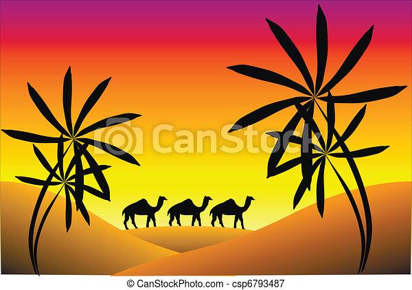 tramonto, deserto - csp6793487