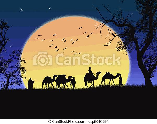 tramonto, deserto sahara - csp5040954