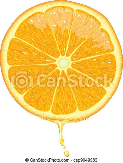 tranche orange, -, vecteur - csp9049383