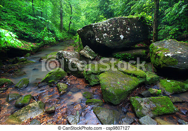 Tranquil Creek Scene in Alabama - csp9807127