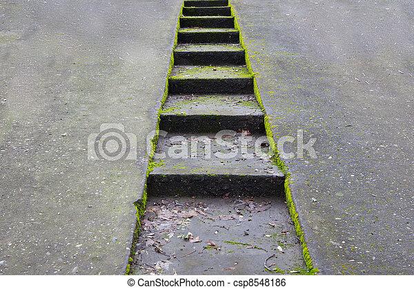 Trap beton oprit trap gezonken encrusted beton groene