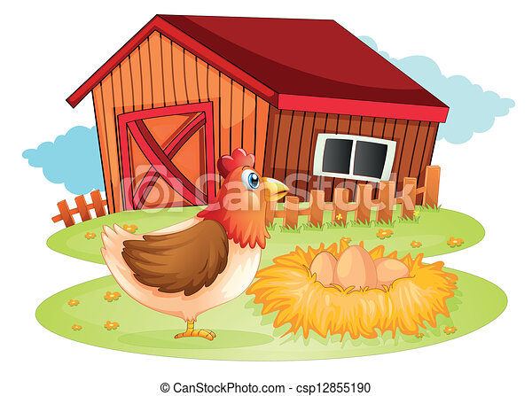 Una gallina y sus huevos en el patio - csp12855190