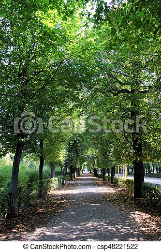 Travel To Vienna Austria The View On The Park With Big Trees And A Road In The Autumn Sunny Day