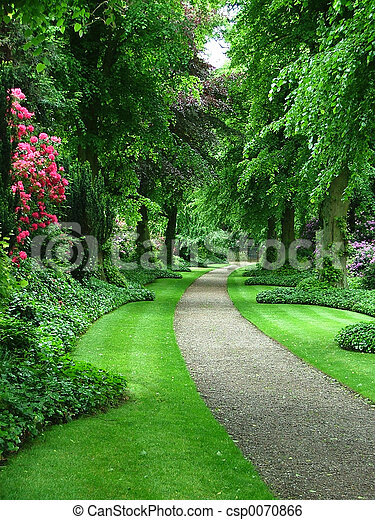 Camino del jardín - csp0070866