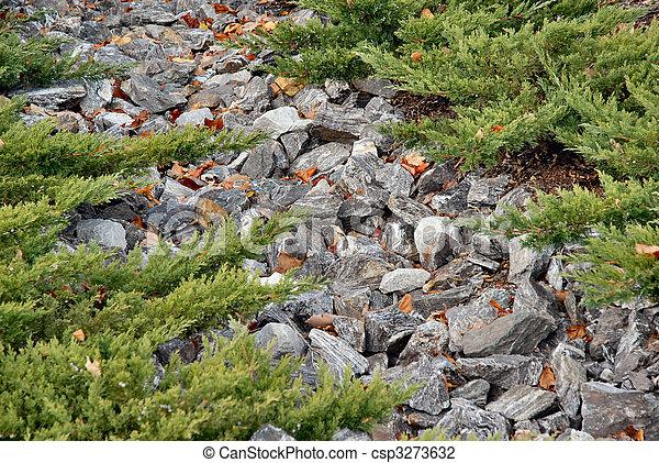Camino de Rocky - csp3273632