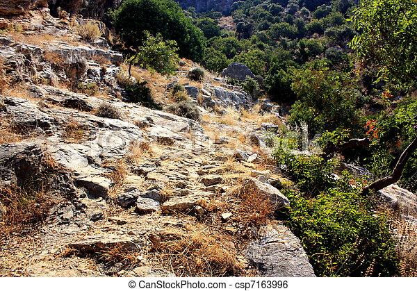 Camino de Rocky - csp7163996