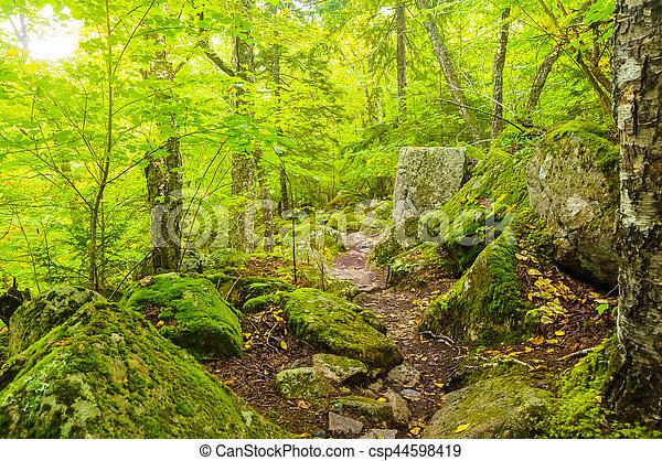 Rocky Way - csp44598419