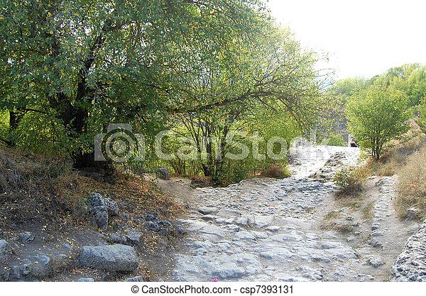 El camino rocoso - csp7393131