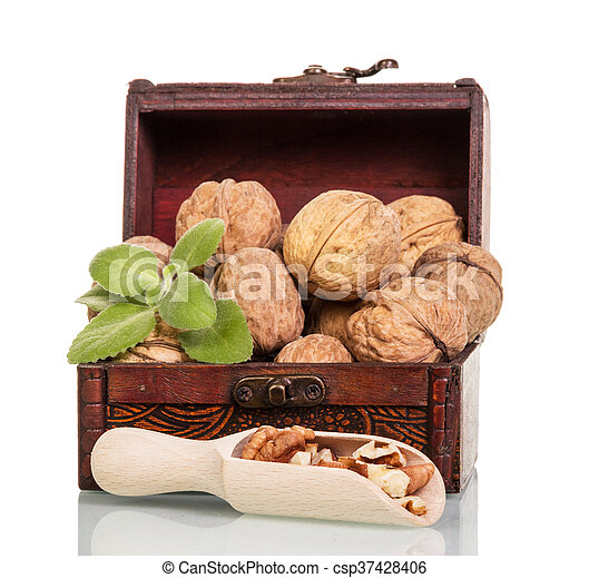 Treasury of with nuts and kernels in wooden scoop isolated. - csp37428406