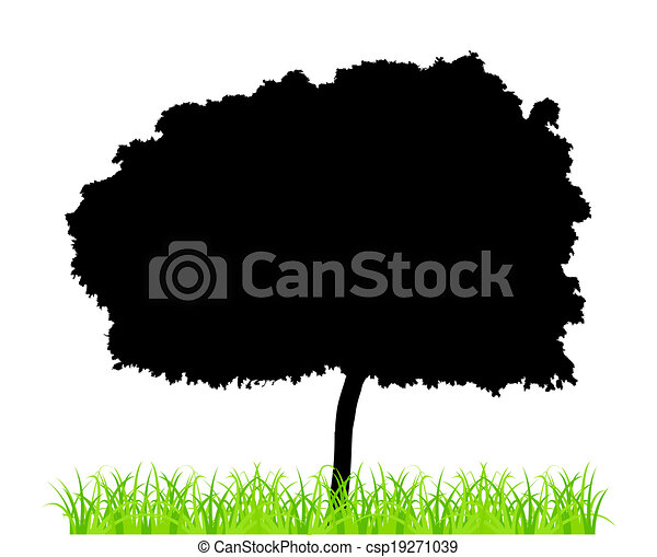 Tree And Grass - csp19271039