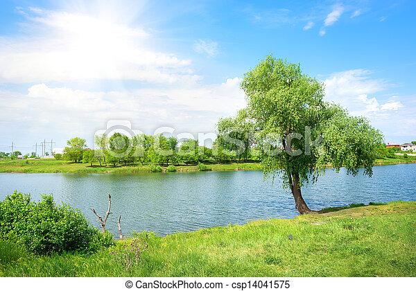 Tree and lake - csp14041575